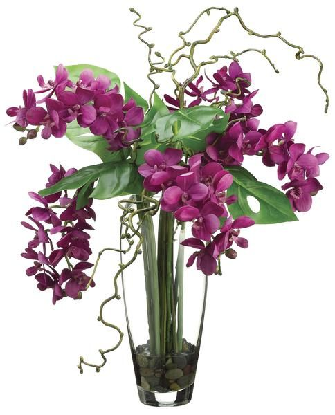 phalaenopsis orchid arrangement in glass vase violet and green home office decor accent: day orchid decor
