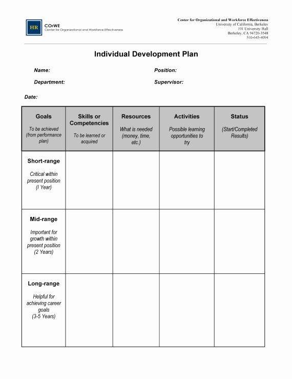 Career Plan Example Career Plan Example Professional