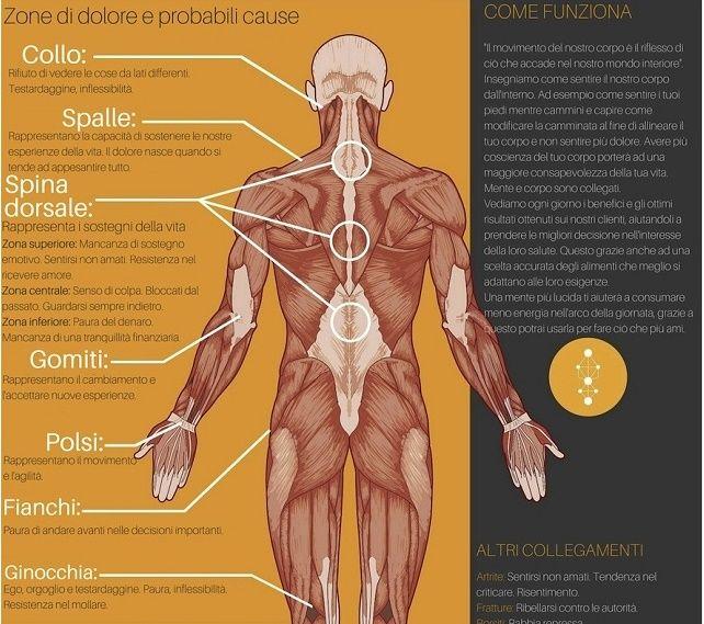 Dolori emozionali: che impatto fisiologico hanno sul nostro corpo? Ormai è risaputo che ogni emozione ha un diverso impatto fisiologico sul nostro corpo. Quando ti senti bene, il tuo cervello rilascia sostanze chimiche come la serotonina e l'ossitocina. Quando sei stressato, il tuo corpo rilascia cortisolo, passando in modalità di sopravvivenza. Detto in parole povere: ciò che pensiamo avrà un impatto profondo sul …
