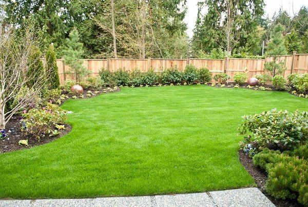 best 17 landscaping ideas
