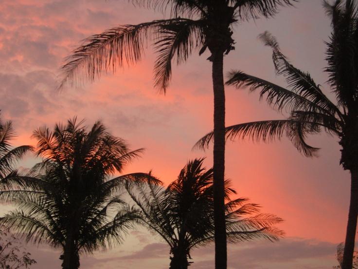 Darwin - sunset