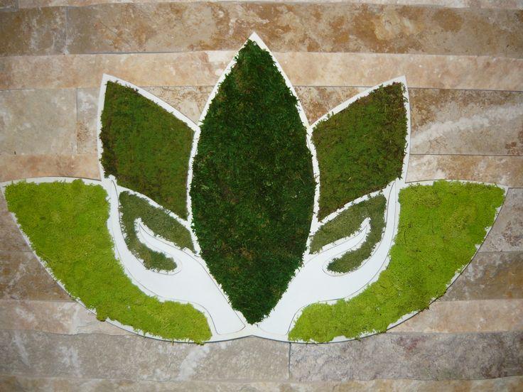 Muschio stabilizzato moss stabilized Moos stabilisierter preserved moss