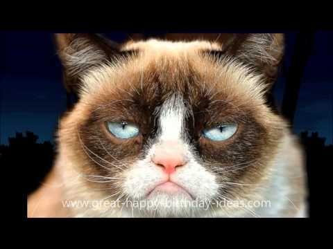 Grumpy Cat Happy Birthday Song - YouTube