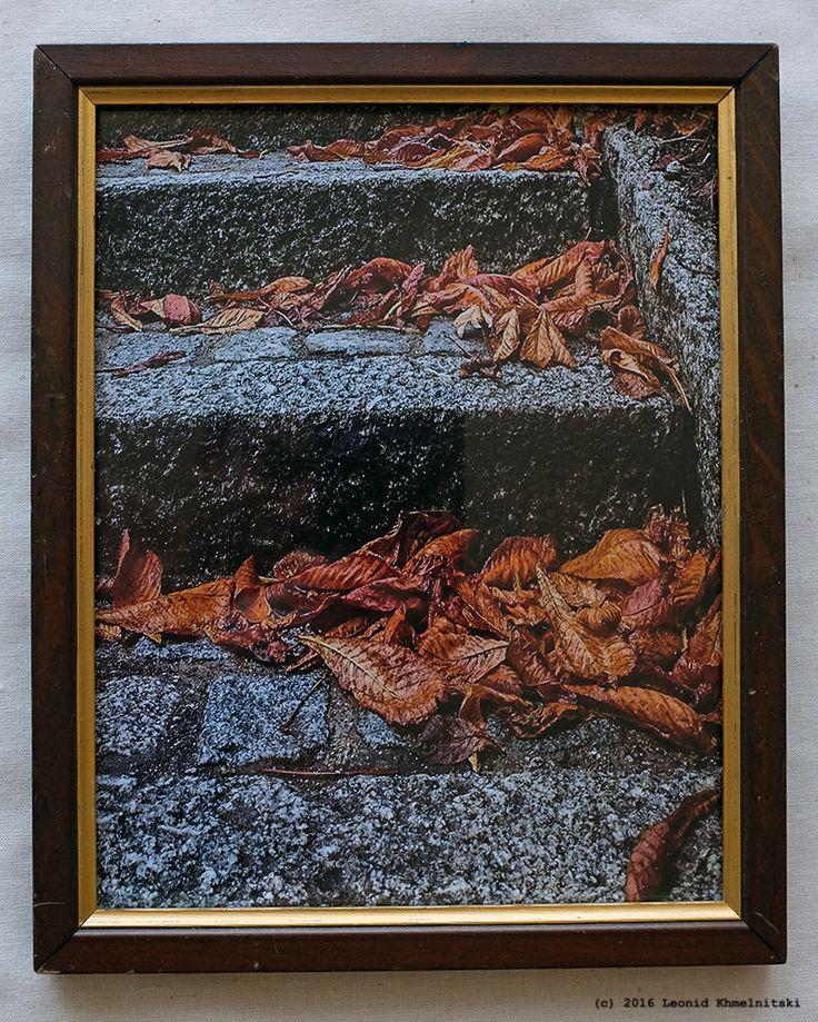My photo  Castanie Leaves in Autumn, Copenhagen  in Danish vintage wooden frame