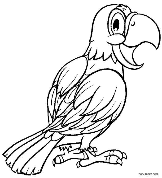 printable parrot coloring pages for kids cool2bkids