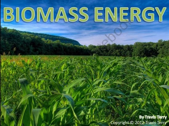 biomass as an alternative energy essay Renewable energy sources such as biomass,  margaret loring essay 3 due 3/2/11 alternative energy alternative and renewable energy seems to be a big topic these days.