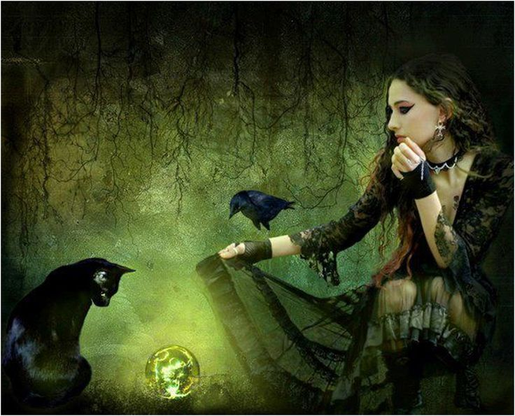 Witch And Her Familiar More Mystical Mythical Magical