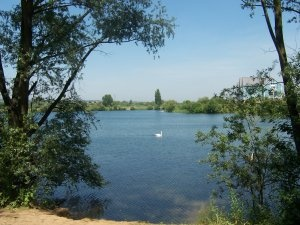 Leybourne Lakes in Mid Kent a beautiful country park where you can wander for hours