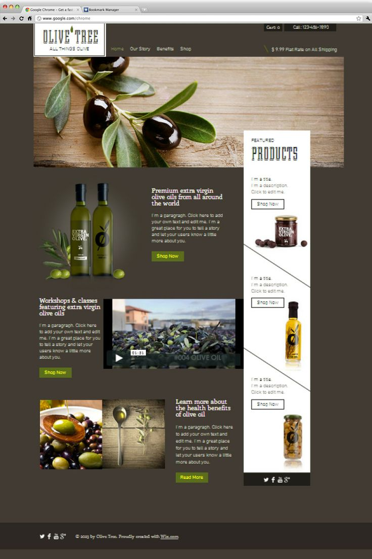 146 best website design templates by wix images on pinterest 26 beautiful website templates for small businesses pronofoot35fo Choice Image