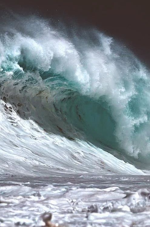 The Big Wave                                                                                                                                                      More