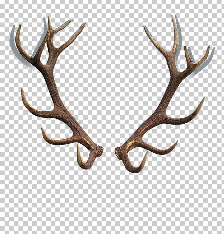 Red Deer Reindeer Antler Horn Png Reindeer Antlers Reindeer Tattoo Antler Tattoos
