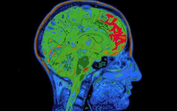 The Cure for Dementia: Eating Brains?