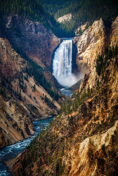 Yellowstone Lower Falls.I would love to go see this place one day.