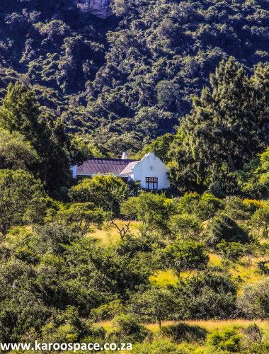 Set in the heavily-wooded Boschberg between Cookhouse and Somerset East, Olivewoods is a working family farm with excellent…