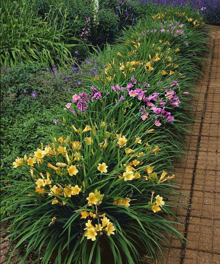 Landscape Design In A Day: 17 Best Images About Garden Border Ideas On Pinterest