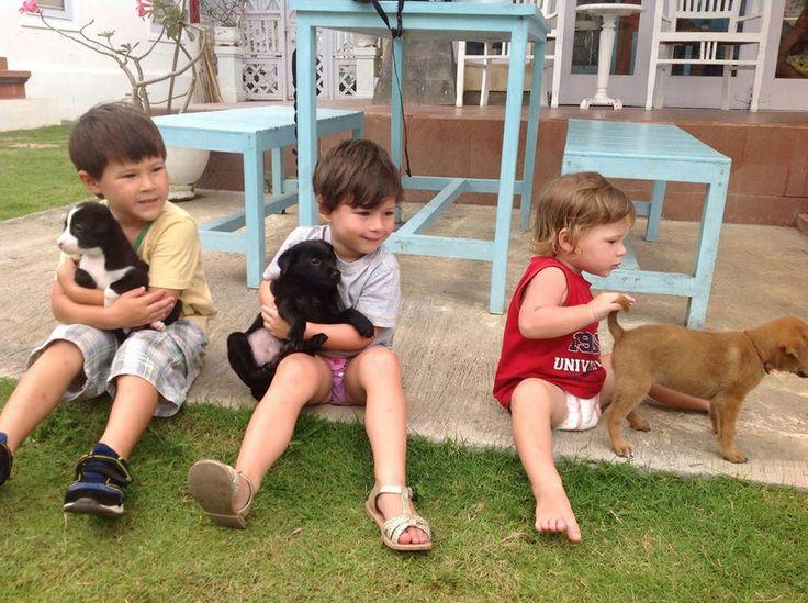 Boys and their K9 @oleoleollie echo beach canggu Bali