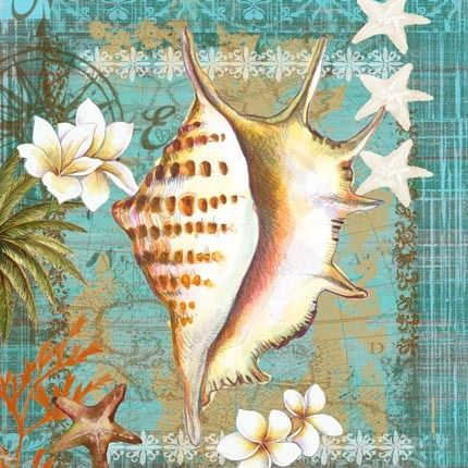 Shells and Plumeria 2 by Elena Vladykina | Ruth Levison Design