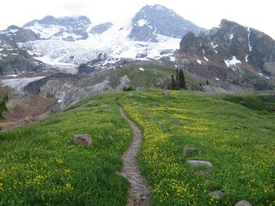 The Wonderland Trail- #Mt. Rainier.