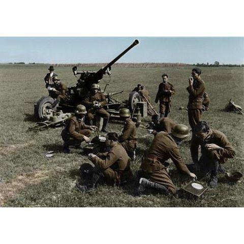 Hungarian Bofors AAGun WW2, pin by Paolo Marzioli