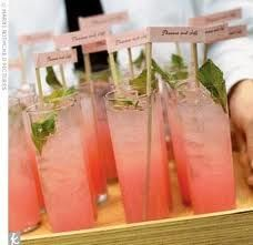 Signature cocktail for coral and mint green wedding colors... But maybe with blueberries for coral and navy?