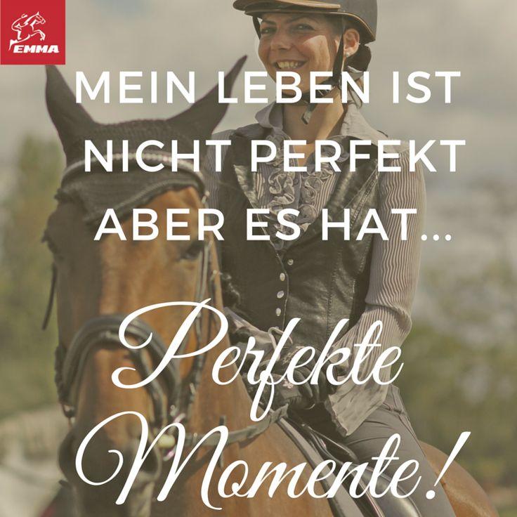 Pferdesprüche & Sportpferde-emma-pferdefuttershop.de (5)