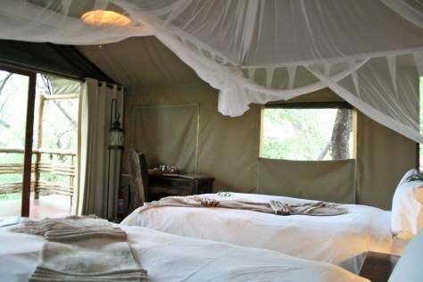 Thakadu River Camp Thakadu is set upon a river bank in the game-rich Madikwe Game Reserve. The tented rooms are luxurious and air-conditioned. The reserve is home to the Big 5, which can be seen on game drives.