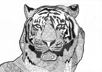 464 best coloring lion tiger images on Pinterest