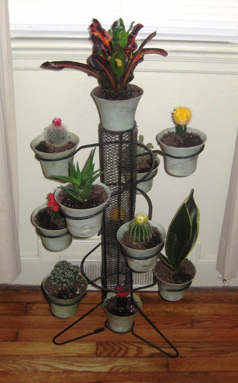 39 best mid century modern plants stands images on. Black Bedroom Furniture Sets. Home Design Ideas