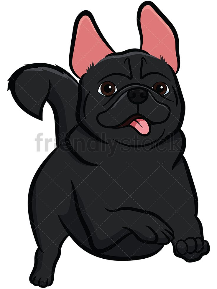 Black Pug Running: Royalty-free stock vector illustration of a black pug dog with a curly tail and its ears erect, running with its tongue out, looking happy. #friendlystock #clipart #cartoon #vector #stockimage #art #pug #cute #mastiff #chinese #dutch #running #black