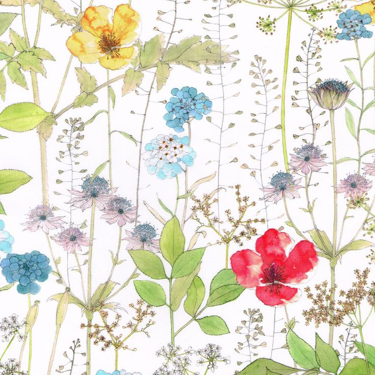 Irma Liberty of London Tana Lawn Fabric One by Alicecarolinesupply