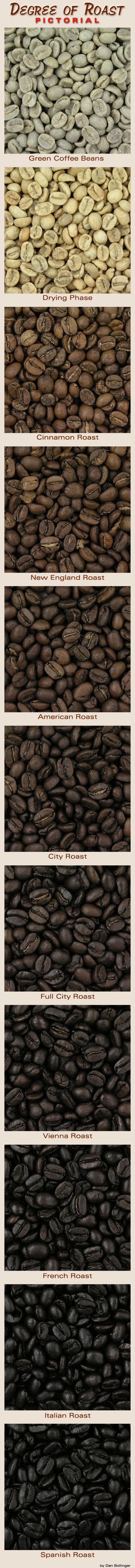 Different levels of coffee roasting. | COFFEE….. Time For Coffee!! | …