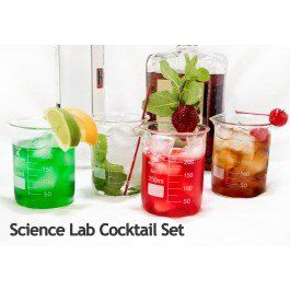 $17 = Med Lab Supply 10 piece Chemistry Bar Beaker Cocktail Glass Set   Med Lab Supply