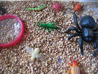 Bug sensory bin - great way to help kids get over a fear of insects or just a fun way to play!