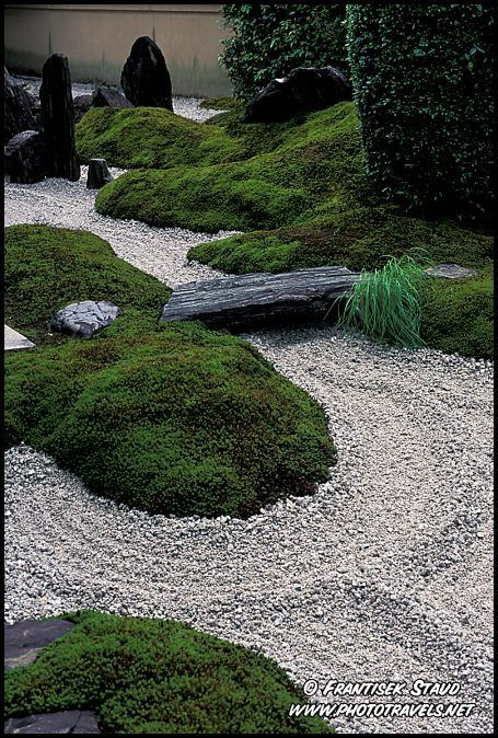 Japanese garden and landscaping design
