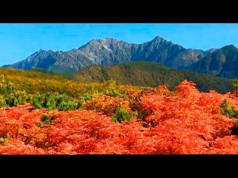 As cores do outono de Norikura, Japão. 乗鞍の紅葉〜日本の秋旅 信州乗鞍岳  - YouTube.