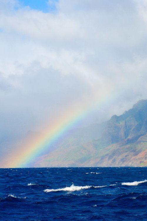Clark Reality On The Big Island Of Hawaii