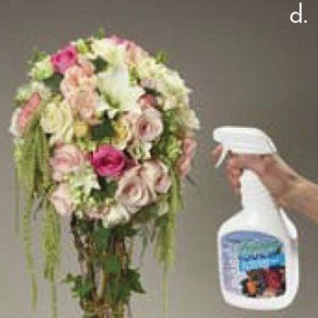 Wedding Decorations Ideas; Browse hundreds of pages filled with photos of centerpieces, church decor, bridal bouquets, reception halls and more.  Easy DIY flower designing lessons.