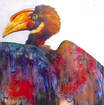 Rufous Hornbill - Absolute Hooligan - Tim Niall-Harris