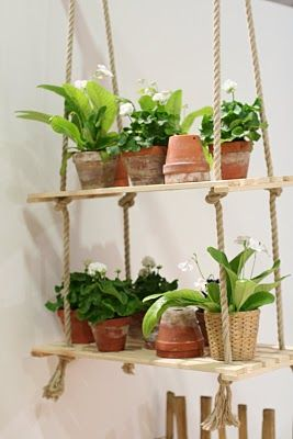 Hanging plant shelves - good for communal area but make with metal wire rope and dark painted wood for more classic discreet look.