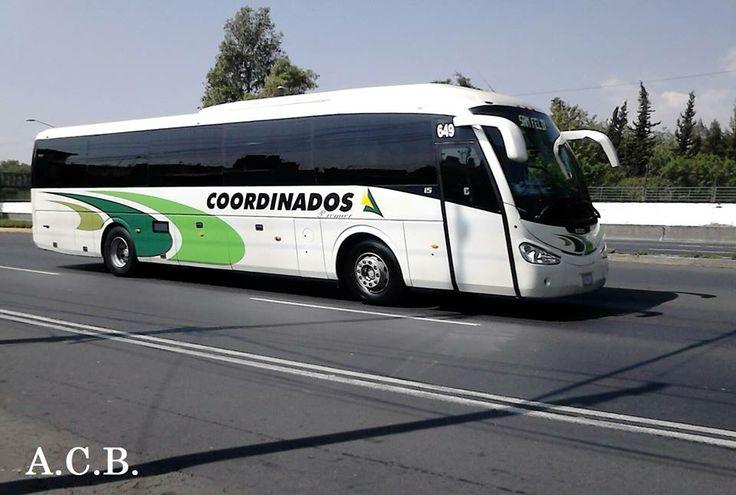 COORDINADOS