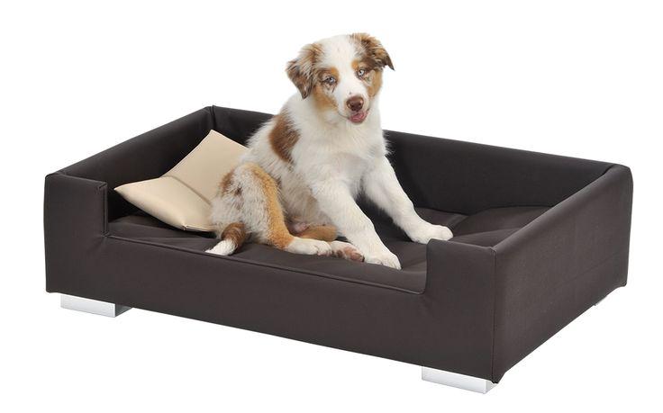 auf dem tiersofa silvio design candy hat es ihr vierbeiniger liebling absolut bequem es ist f r. Black Bedroom Furniture Sets. Home Design Ideas