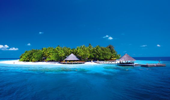 Black Friday Offer! Maldives - Angsana Ihuru 5* Angsana Ihuru 5* is located in one of the best preserved coral reefs from Maldives. The luxurious resort has 45 villas offering spectacular views of the ocean. Visit http://www.perfect-tour.com/black_friday_offers/black_friday_offer_maldives___angsana_ihuru_5-2-offer.html