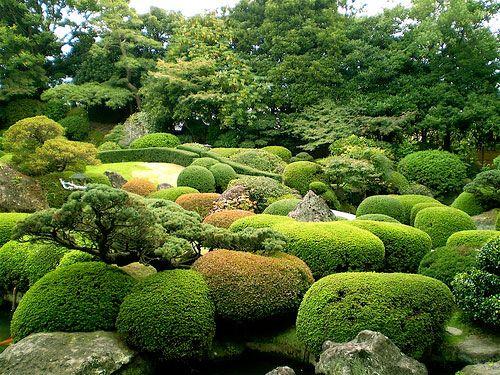 Garden Design: Garden Design With Garden Shrubs Small Backyard