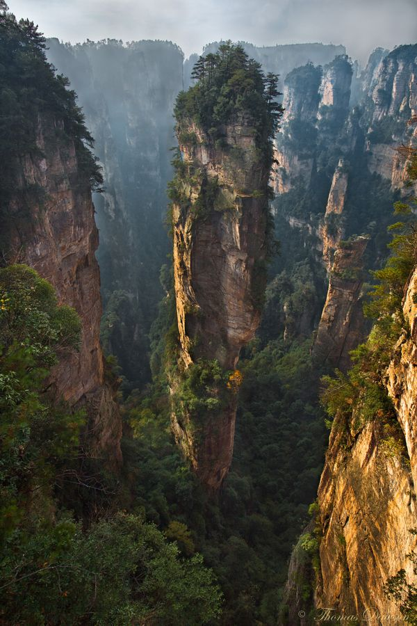 Zhangjiajie National Forest Park in China. one of the places i want to visit the most. created by sinkholes that spread through the region..leaving pillars of rock reaching up towards the sky.