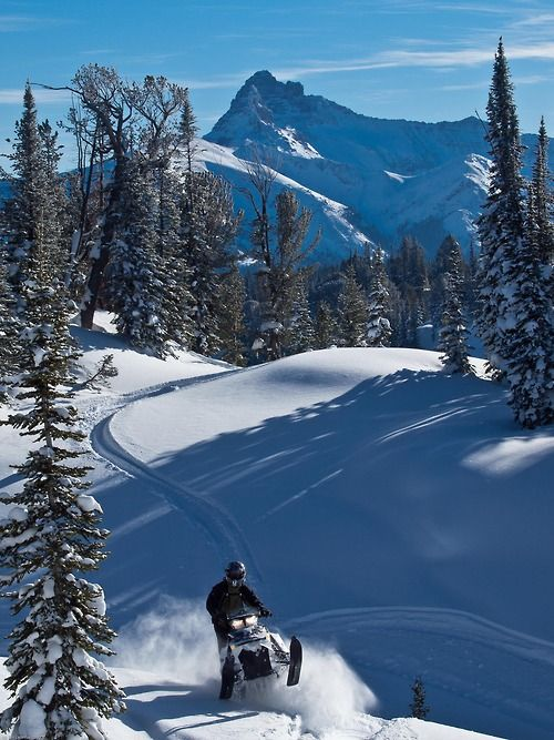 Snowmobiling Cooke City, Montana.    ..z