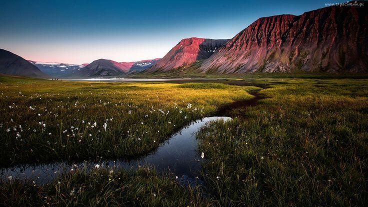 Góry, Rzeka, Kwiaty, Trawa
