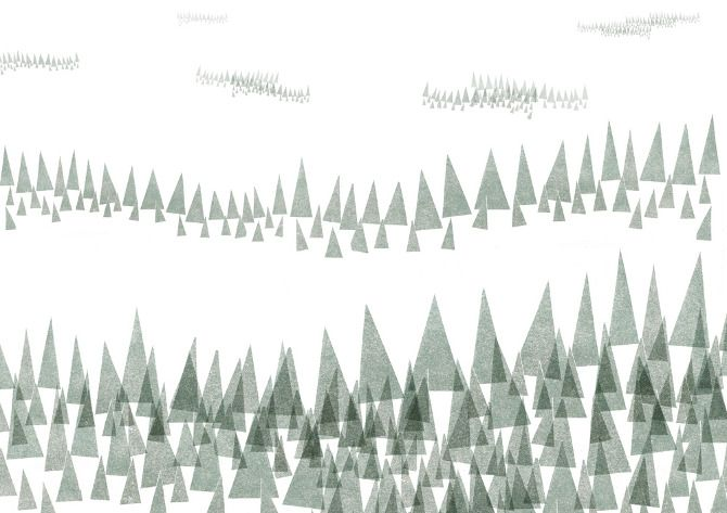 collagedtrees.jpg (670×473)