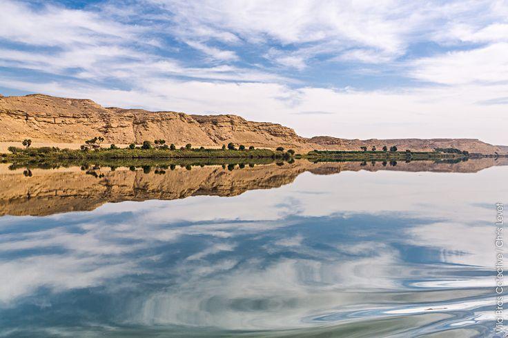 Reflets sur le Nil