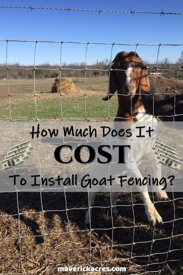 Cost To Install Goat Fencing In 2020 Goat Fence Goats Fence