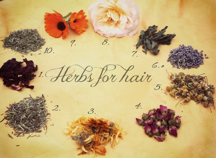 Herbs for hair: Hibiscus, hair growth stimulator that prevents hair loss. Rosemary, used to prevent hair loss and premature graying. Calendula, a natural sunscreen and helps with cuticle sealing, perfect for skin and scalp conditions. Dried Rosebuds, natural gentle balancer for the hair and skin. Chamomile, used for centuries to lighten the hair and add golden highlights. Lavender, a healing and stimulating tonic for the hair and skin. Peppermint is a known skin and scalp balancer.